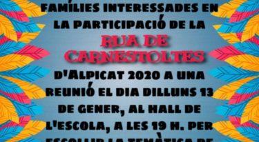Reunio Rua Carnestoltes 2020
